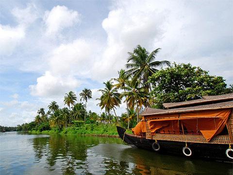 kochi,kerala,india Tour Operators